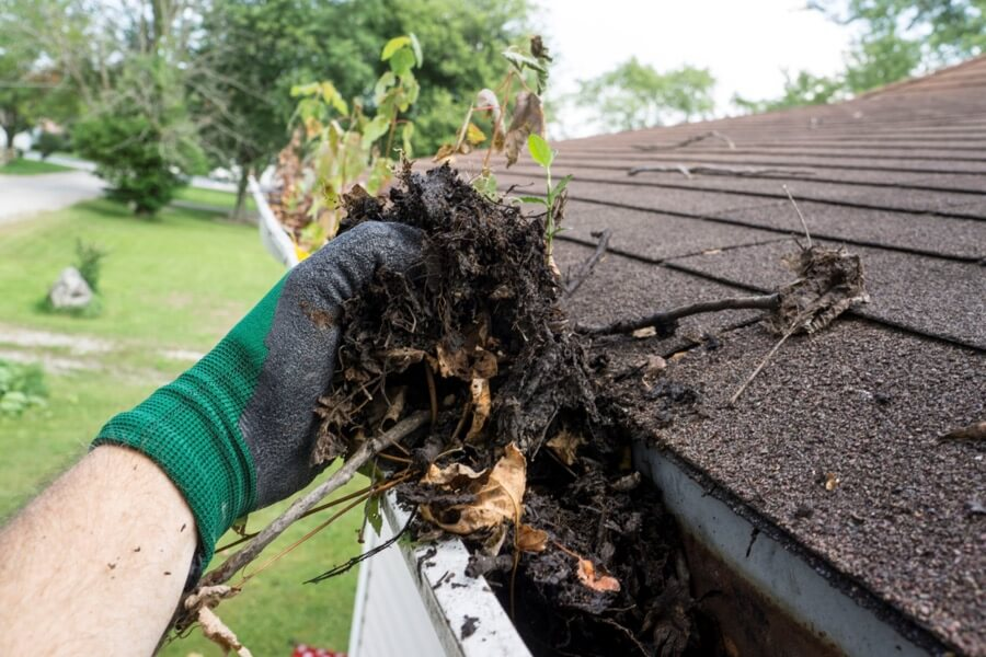 Gutter Cleaning Contractor
